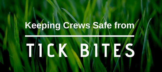 Keeping Crews Safe from Tick Bites